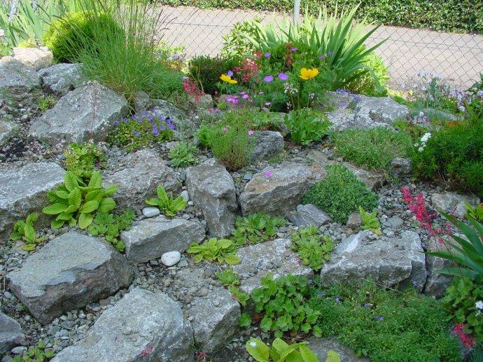 Steingarten anlegen aufbau steingarten hang anlegen steingarten anlegen sch ne ideen tipps und - Steingarten anlegen aufbau ...